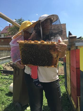 Prehliadanie vystavaného rámika s včelami
